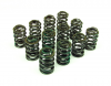 Valve Spring Set (Green), High Lift - Triumph GT6 TR250 TR6